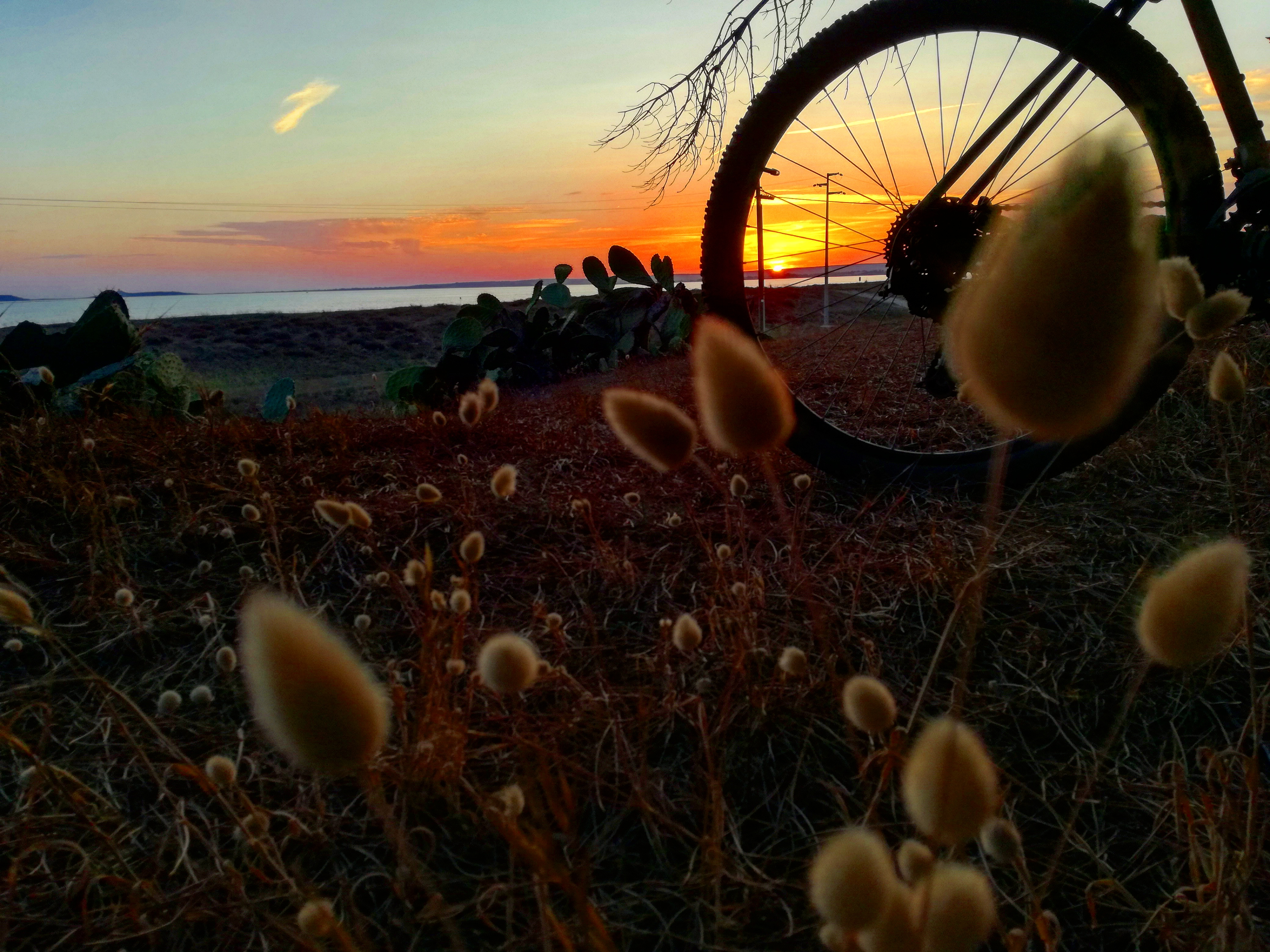 MTB sardabike sardegna oristano mountain bike tour guide guided trails