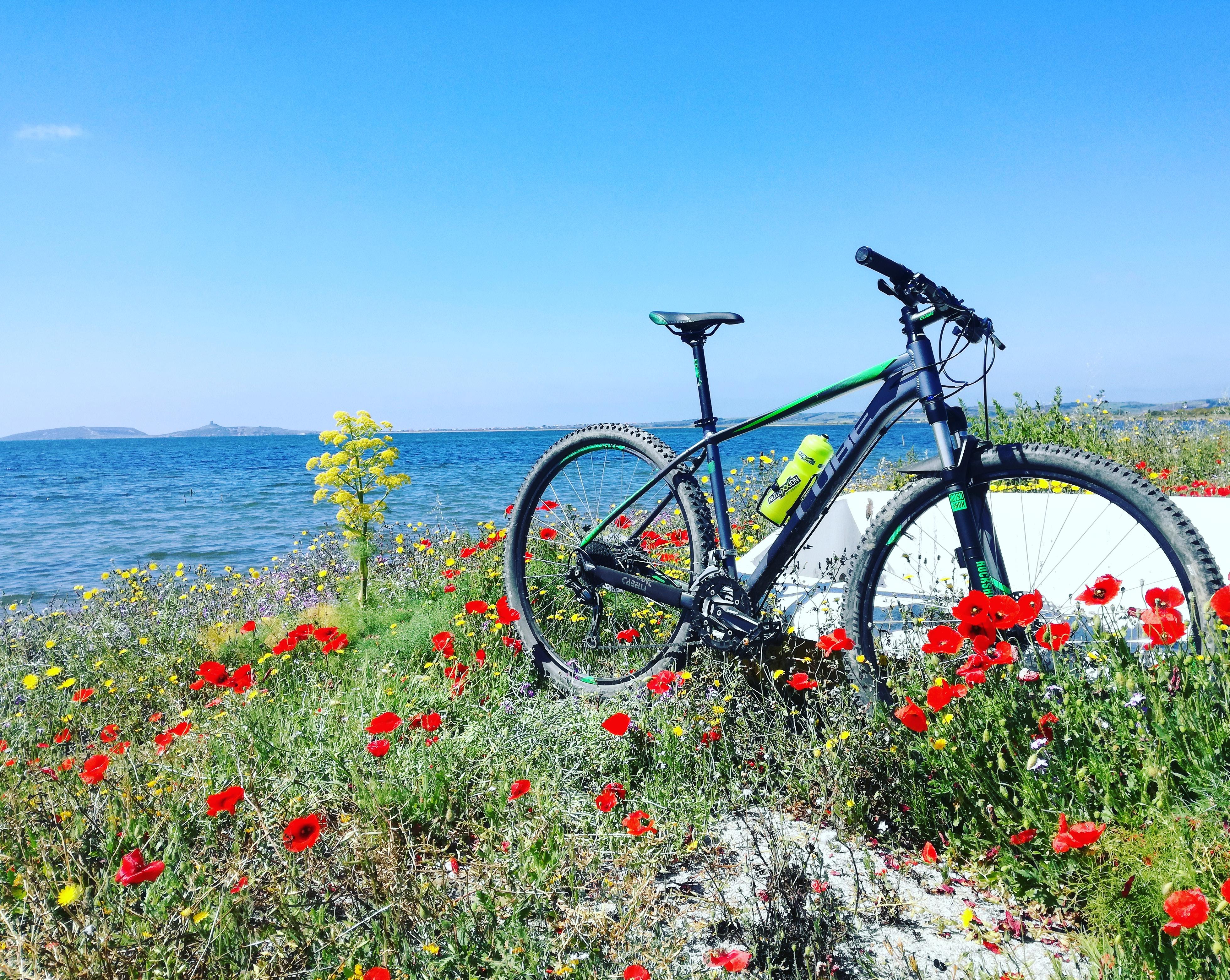 mtb sardegna guided trails tourguide sardabike