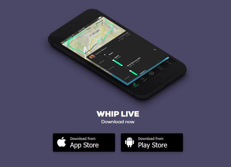 whip live